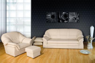 Apollo - Leather sofa bed