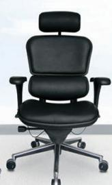Ergohuman all black leather chair with headrest
