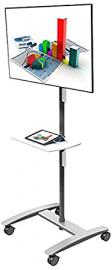 Dataflex Viewmate workstation - floor 712 - multimedia carts & stands (Silver)