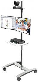 Dataflex Viewmate workstation - floor 722 - multimedia carts & stands (Silver)