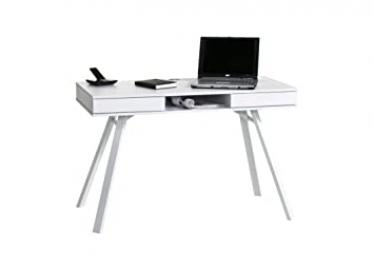 Maja Furniture 4087 5539/Computer and Writing Desk, Icy-White, Dimensions: 120 x 78 x 64 cm