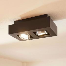 Plafonnier LED Vince à 2 lampes, noir