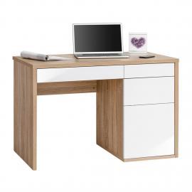 Bureau pour ordinateur Frontie