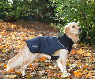 Hundemantel Scruffs Thermal Hundemantel