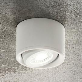 Kantelbare kop - LED downlight Anzio, wit